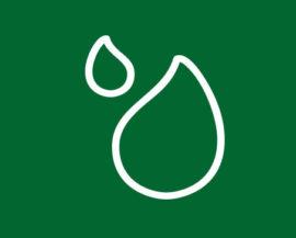 progetto extra vergine oli vegetali