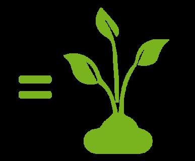 organico-diventa-compost